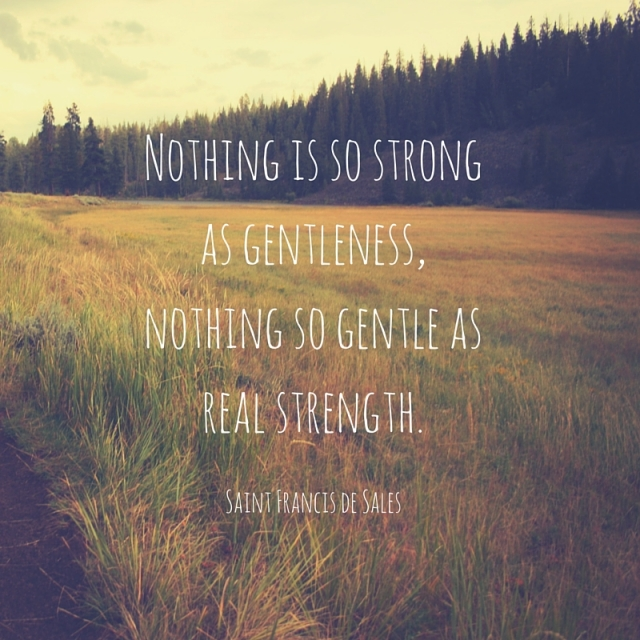 nothing-is-so-strong-as-gentleness-nothing-so-gentle-as-real-strength-1